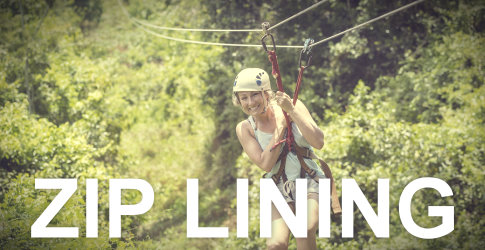 Fiddlehead Resort Camp Activities Ziplining